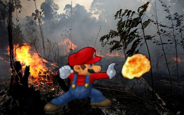 "Super Mario: ""So Long, Gay Amazon Rainforest!"""
